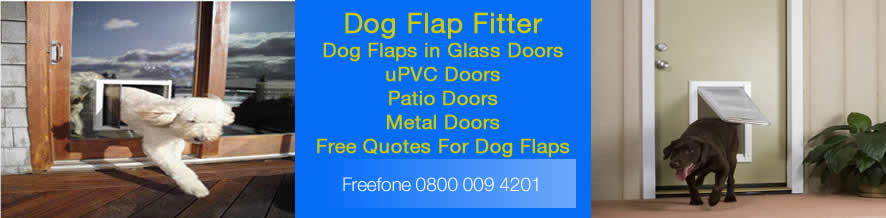 Dog Flaps Stourbridge